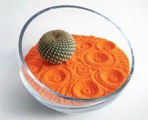 Jardín zen naranjado con cactus